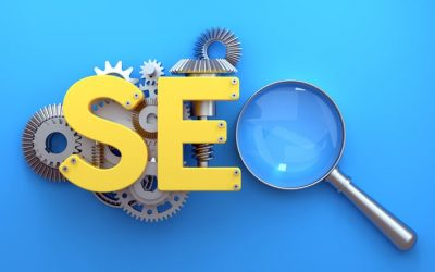 What Happens When I Stop Doing SEO?